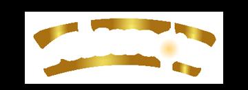 logo-cizgili2